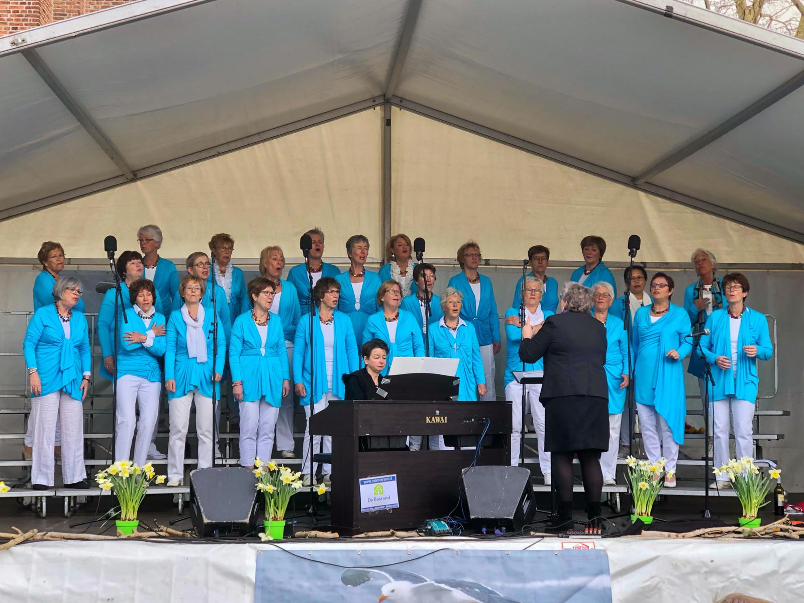 Voices for Hospices 2019